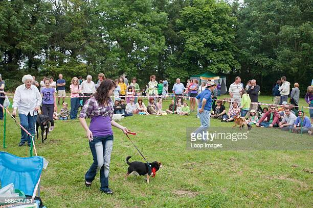 A dog show at a local fair in Norfolk