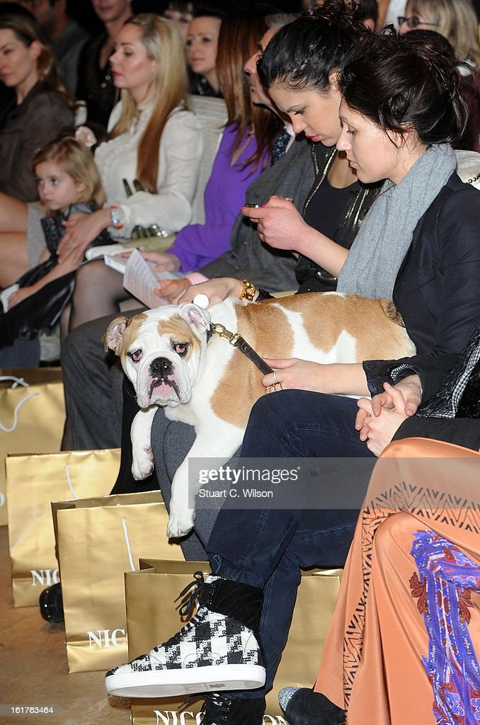 A dog sits on the front row to view designs at the Nico Didonna presentation during London Fashion Week Fall/Winter 2013/14 at Baku Restaurant on February 15, 2013 in London, England.