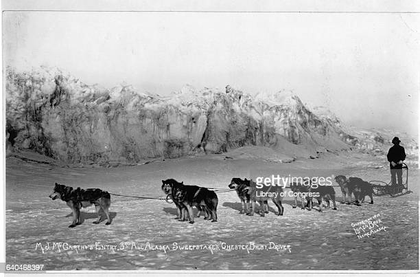 A dog sled team entered by MJ McCarthy prepares for the 3rd All Alaska Sweepstakes The driver of the team is Chester Bilby