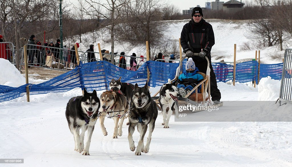 Dog sledding takes place during carnival in Quebec City, on February 10. Canoe Races, snow baths, sliding on tubes, dog sledding, hockey, table football human ... between sporting events, games and challenges crazy, everything is good to take against the winter-foot Carnaval de Québec. Accustomed to living with the cold, Quebecers do not hibernate and even profit from the winter freeze nature in a glossy décor to engage in activities a little crazy, they have invented to 'break the ice'. The 59th Quebec Winter Carnival, which makes the heart beat of the city of La Belle Province since the beginning of February is a perfect illustration of the ability to grow their warm and cheerful defogger.