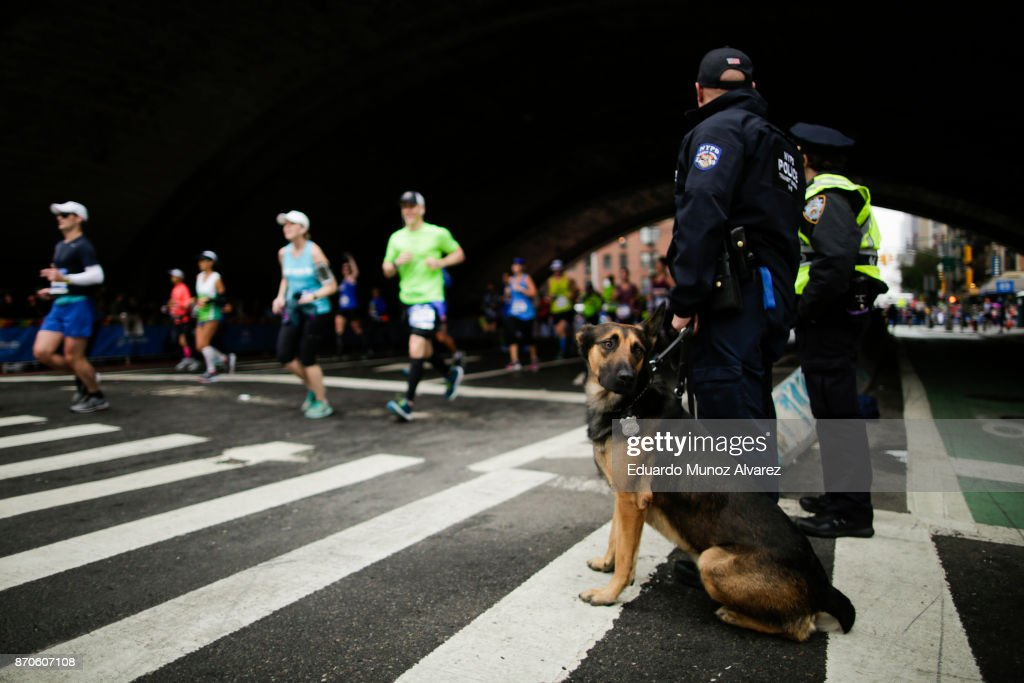 K9 dog stands guard as runners make their way under the Ed Koch Queensboro Bridge during 2017 TCS New York City Marathon, November 5, 2017 in New York. NYPD department had doubled the number of rooftop observation posts and countersniper teams in all five boroughs. More uniformed police officers, counterterrorism officers and police dogs will patrol the event. more than 50,000 runners from more than 125 countries and all 50 states are expected to pass before some 2.5 million spectators. Established in 1970, the annual race winds through all of New York City's five boroughs.