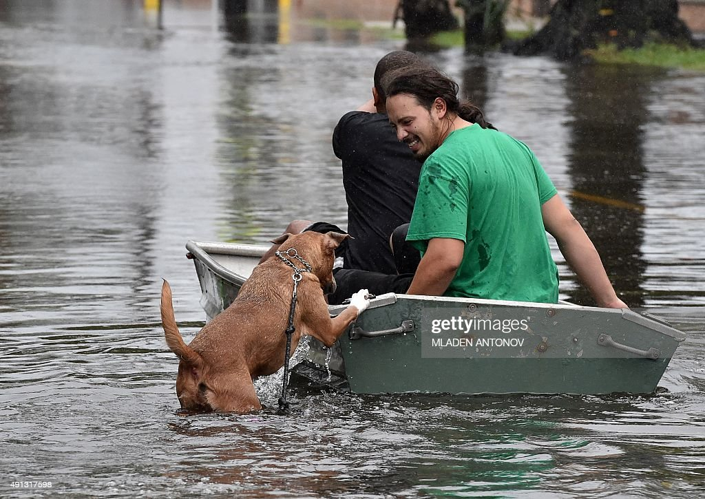 A dog tries to board a boat as two men row down a flooded street in Charleston South Carolina on October 4 2015 Relentless rain left large areas of...