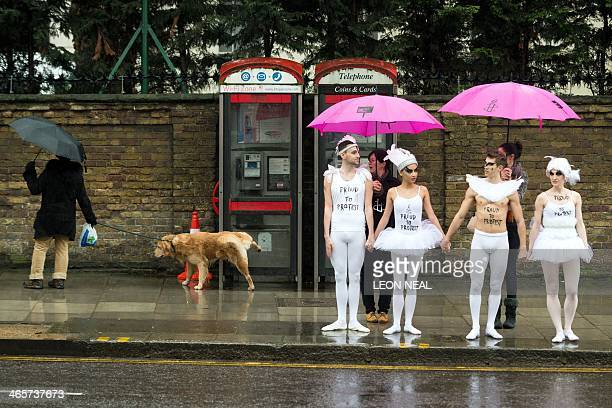 A dog urinates on a phonebox as ballet dancers prepare to perform a scene from 'Swan Lake' during a protest near to the Russian embassy in London on...