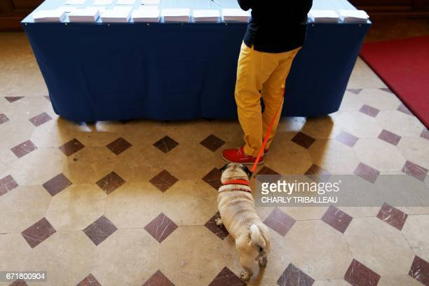 A dog waits as his owner prepares to cast his ballot in Caen northwestern France on April 23 2017 during the first round of the French Presidential...