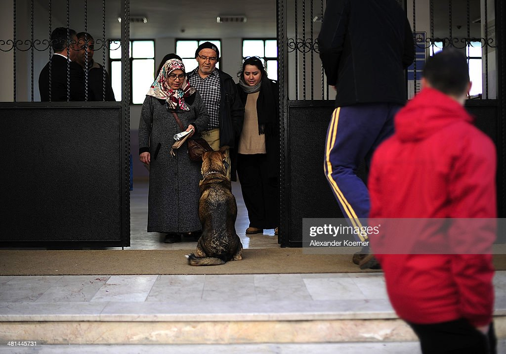 A dog waits for its owner in front of the Sait Ciftci School in the Sisli district of Istanbul during the first round of the local elections on March 30, 2014 in Istanbul, Turkey. The nationwide municipal elections held today are seen as a referendum on Prime minister Recep Tayyip Erdogan's tenure as he struggles to survive recent scandals. The candidate who wins the city hall vote could be a leading candidate into the presidential vote in six months and parliamentary polls next year.