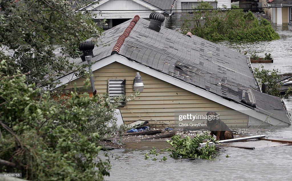 Hurricane Katrina Slams Gulf Coast Getty Images