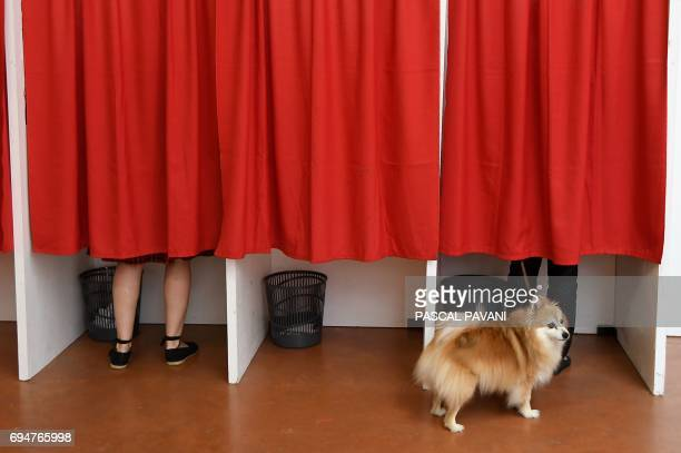TOPSHOT A dog waits outside voting booths at a polling station in Castelsarrasin southern France during the first round of the French legislative...