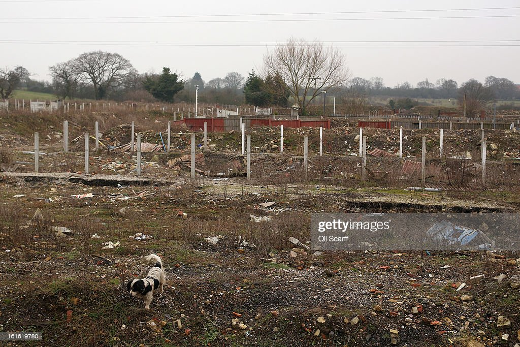 A dog walks on the portion of the Dale Farm traveller's camp which was cleared of residents and structures by Basildon Council, on February 13, 2013 in Crays Hill, England. Basildon Council have approved a new site to accommodate the displaced travellers, which lies less than 800 meters from Dale Farm. Following Basildon Council's eviction in October 2011, which was estimated to have cost 7 million GBP, many travellers now reside on the access road for the legal portion of the Dale Farm site.