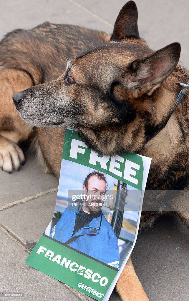 A dog wearing a sign bearing the words 'Free Francesco' and a portrait of imprisoned French Greenpeace activist Francesco Pisanu sits on the sidelines of a protest calling for the release of a group of Greenpeace activists imprisoned in Russia, on October 31, 2013, in Paris. Representatives of thirty non-profit organizations called for the protest in Paris in support of the jailed Greenpeace activists. The so-called 'Arctic 30' group of Greenpeace activists initially took part in a protest action in which they scaled a state-owned oil platform to demonstrate against Russian energy exploration in the Arctic. The group is now being held in prison in Russia, originally on a charge of piracy, which later was reduced by Russian authorities to 'hooliganism', which carries a lesser sentence but is still punishable by up to seven years in prison.