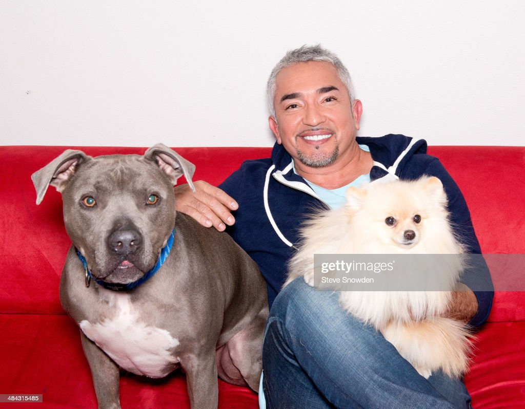 Dog Whisperer Cesar Millan star of Nat Geo WILDs series Leader of the Pack poses backstage with his pit bull Junior after his performance at Route 66...