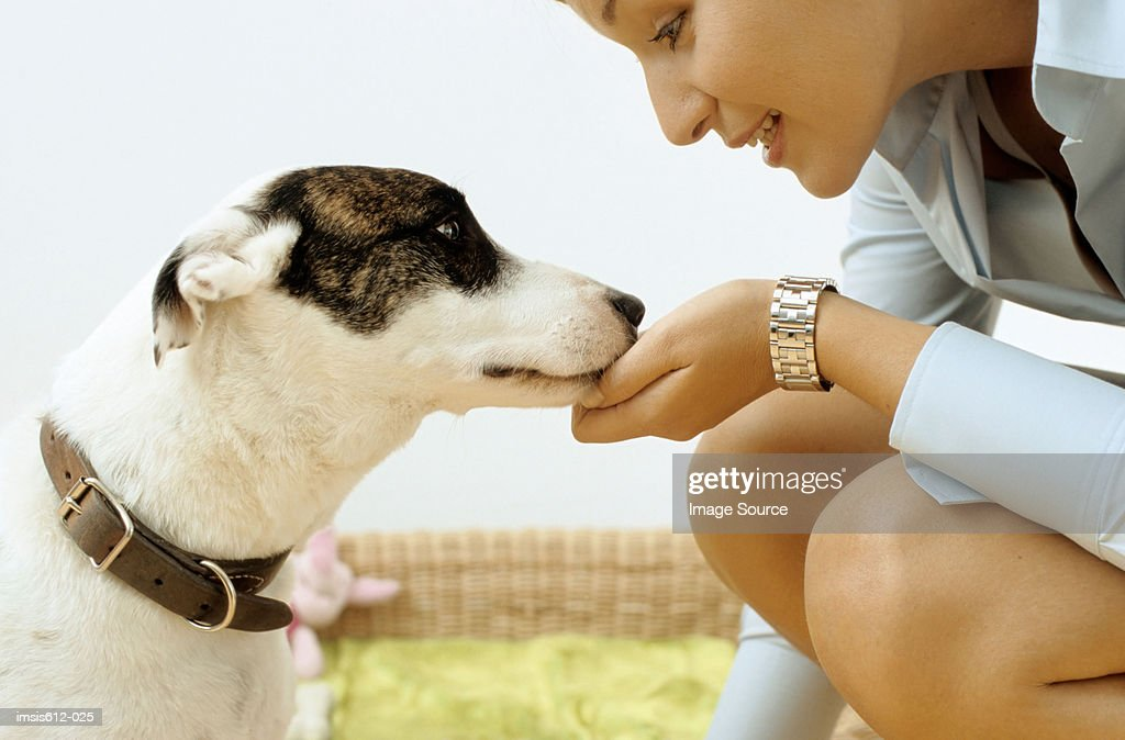 Dog with affectionate owner : Stock Photo