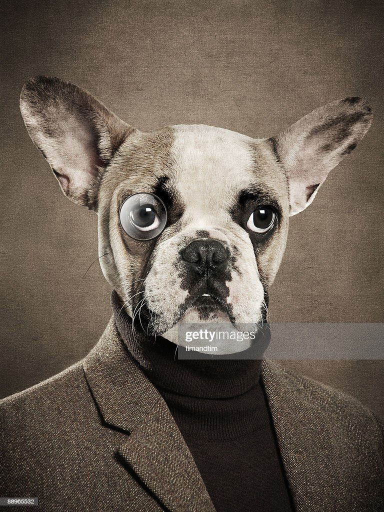 Dog with monocle and human body : Stock Photo