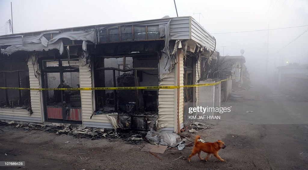 A dog wonders past damage houses following a North Korean artillery and rocket attack on November 23 on the South Koreacontrolled island of...