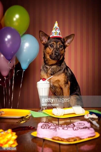 Doggy Birthday Party