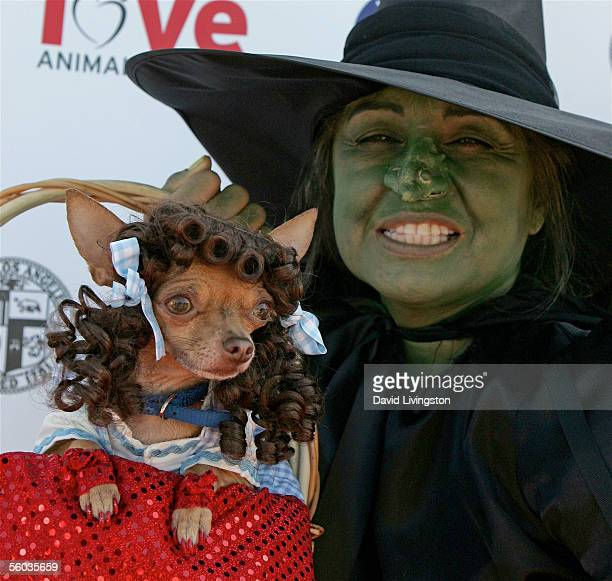 A doggy costume contest contestant and it's owner arrive at the Dogswell Dog Treats Presents The Fourth Annual Much Love Animal Rescue Bow Wow Ween...