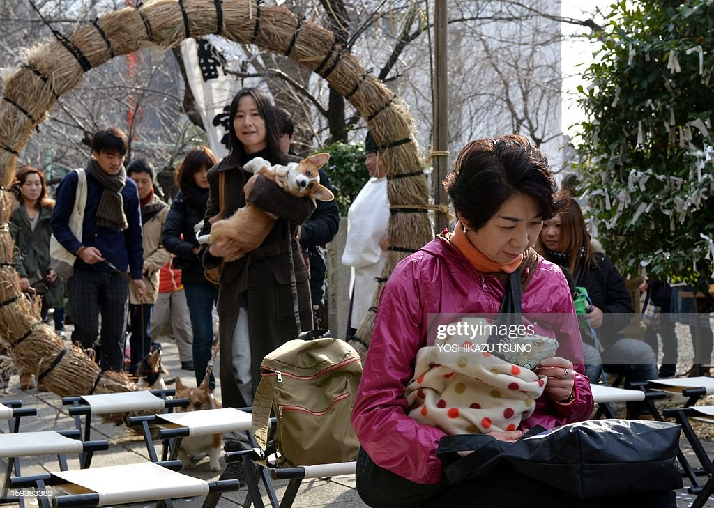 Dogs and their owners pass a sacred straw ring (L) before a purification ceremony, while a green iguana (R) and its owner wait, at the Ichigaya Kamegaoka-Hachiman shrine in Tokyo on January 13, 2013. Some 500 pets and their owners visit at the shrine to celebrate for the New Yaer and pray for their animal's health and happiness. AFP PHOTO / Yoshikazu TSUNO