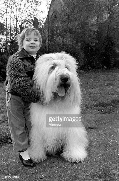 'Duke' the Dulux dog has 3 understudies they are Tania Polly and Cassie Their owners are Dawn and Phillip Rowley of Shepperton Middx And they take...