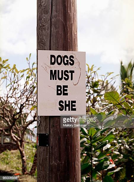 Dogs must be she sign