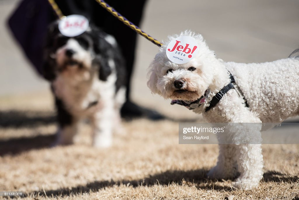 Dogs show their owner's support for Republican presidential candidate Jeb Bush following a campaign event February 19 2016 in Greenville South...