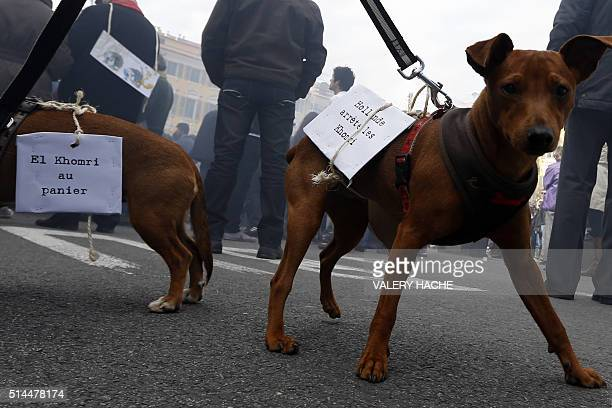 Dogs wearing placards reading 'El Khomri to bed' and another with a play on words referring to the French labour minister and reading 'Hollande cut...