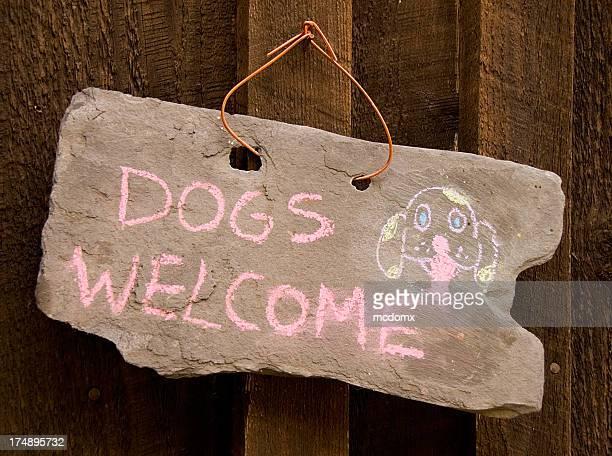 Hunde herzlich willkommen!