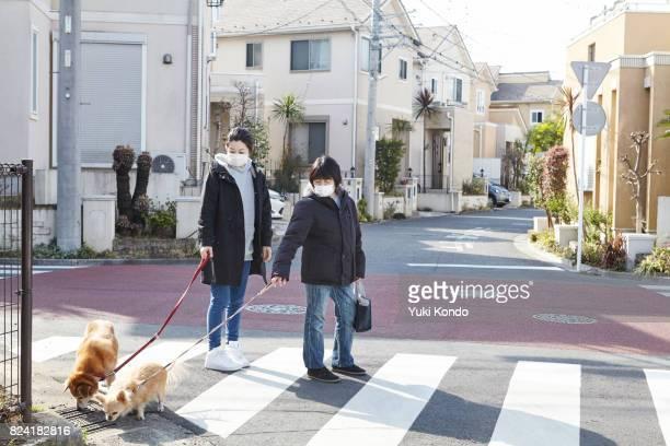 Dog-walking.