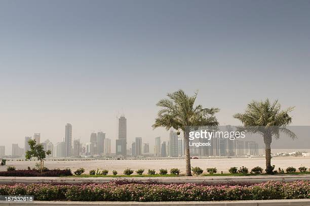 Doha skyline and palm trees