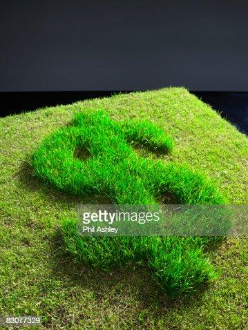 dollar symbol cut into grass : Stock Photo