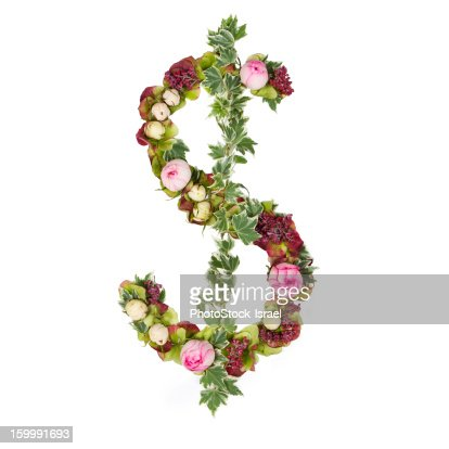 US dollar symbol : Stock Photo