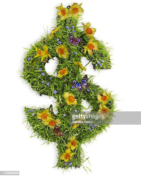 Dollar symbol with flowers and grass