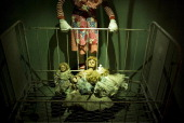 Dolls are seen at The Curse Of Frau Mueller Haunted House October 25 2013 in Washington DC AFP PHOTO/Brendan SMIALOWSKI