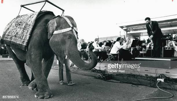 Dolly the Elephant Takes a Symphony Bow Jim Setapen at right the Exxon / Arts Endowment conductor who led the Denver Symphony Orchestra during a...