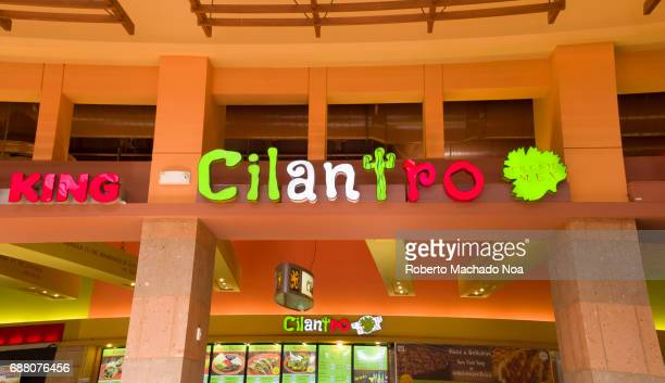 Dolphin Mall Cilantro Cafeteria upside view of the main sign at the food court