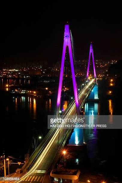 Dolsan Bridge colored with violet