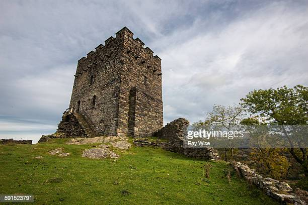 Dolwyddelan Castle - main tower