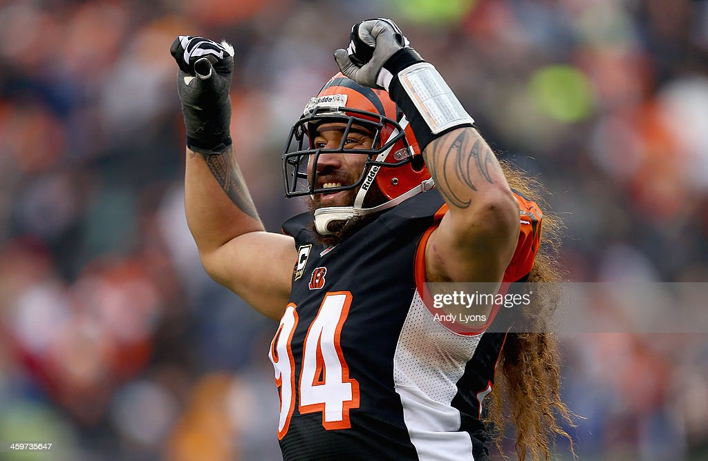 <a gi-track='captionPersonalityLinkClicked' href=/galleries/search?phrase=Domata+Peko&family=editorial&specificpeople=1127235 ng-click='$event.stopPropagation()'>Domata Peko</a> #94 of the Cincinnati Bengals celebrates during the 34-17 win over the Baltimore Ravens at Paul Brown Stadium on December 29, 2013 in Cincinnati, Ohio.