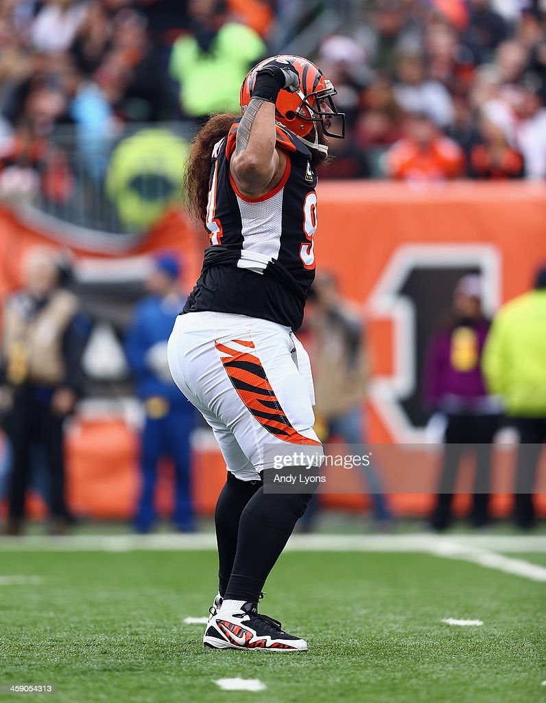 <a gi-track='captionPersonalityLinkClicked' href=/galleries/search?phrase=Domata+Peko&family=editorial&specificpeople=1127235 ng-click='$event.stopPropagation()'>Domata Peko</a> #94 of the Cincinnati Bengals celebrates during the NFL game against the Minnesota Vikings at Paul Brown Stadium on December 22, 2013 in Cincinnati, Ohio.