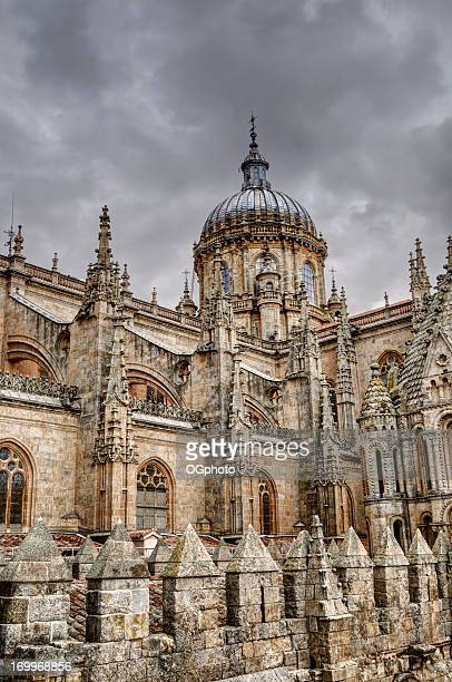 Dome and roof of the Salamanca New Cathedral