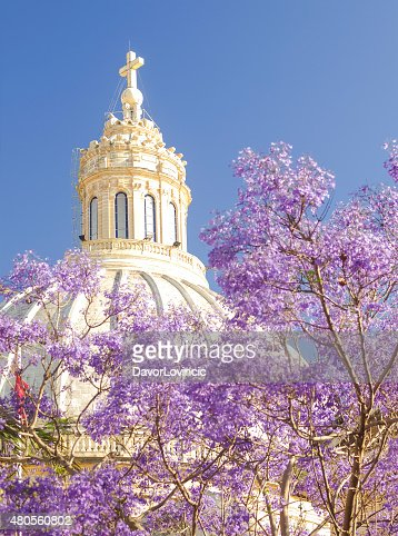 Dome of  Basilica in Flowers, Malta : Stock Photo