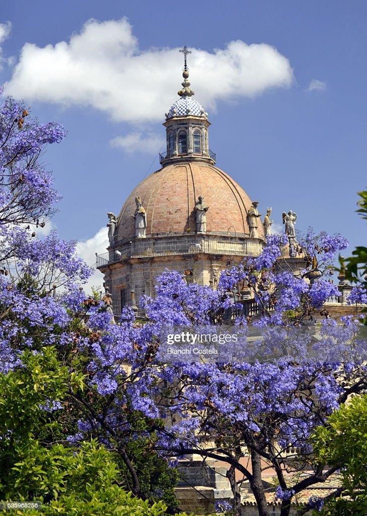 Dome of the Cathedral of Jerez de La Frontera : Stock Photo