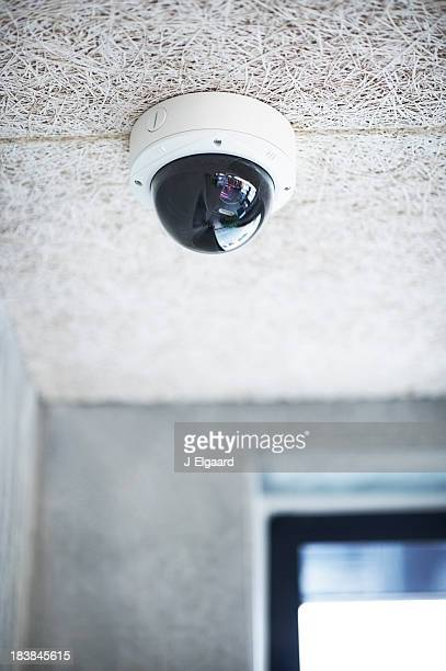 Dome type overhead security camera