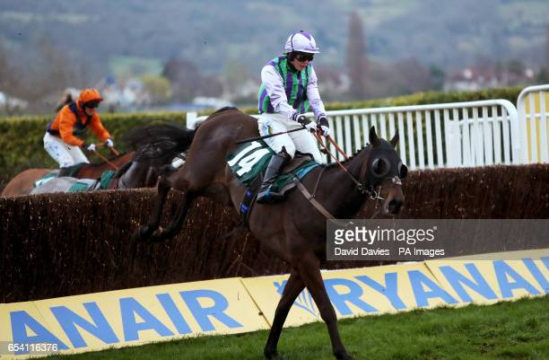 Domesday Book ridden by jockey Gina Andrews on the way to winning the Fulke Walwyn Kim Muir Challenge Cup Amateur Riders' Handicap Chase during St...
