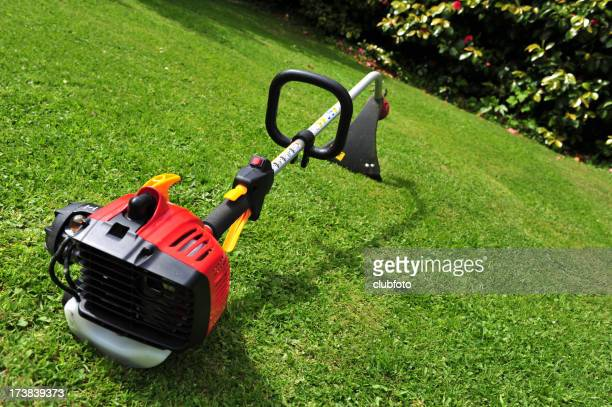 Domestic garden strimmer - differential focus  sharpness on trigger