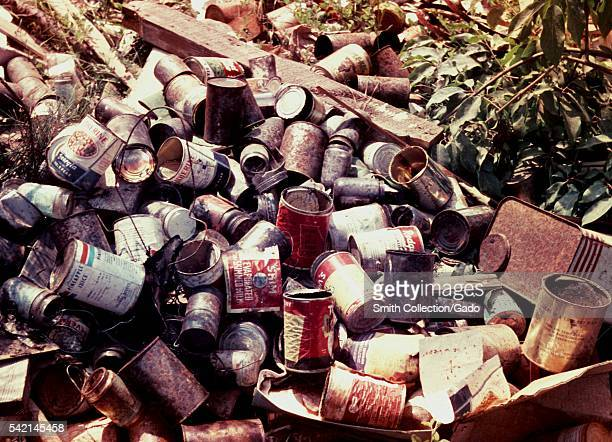 Domestic mosquitoes can breed in tin cans in open dumps 1975 Domestic species are those that breed close to human habitation Tin cans in open dumps...