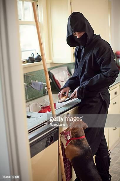Domestic Ninja Ironing Washing the Dishes