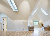 Domestic room with skylights and hardwood floor