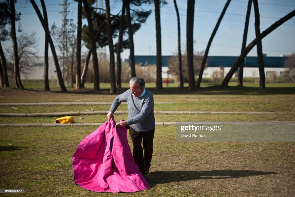 Domingo Cardona, 78, practices bullfighting in a city park in Santa Perpetua de la Mogoda on March 3, 2013 in Barcelona, Spain. On February 12 the Spanish Parliament accepted a petition from bullfight supporters asking for the sport to become a key part of the Spain's cultural heritage. The petition, of 590,000 signatures, has been promoted by the Federation of Bullfighting Entities of Catalonia. The last bullfight in Catalonia was held in September 25, 2011.
