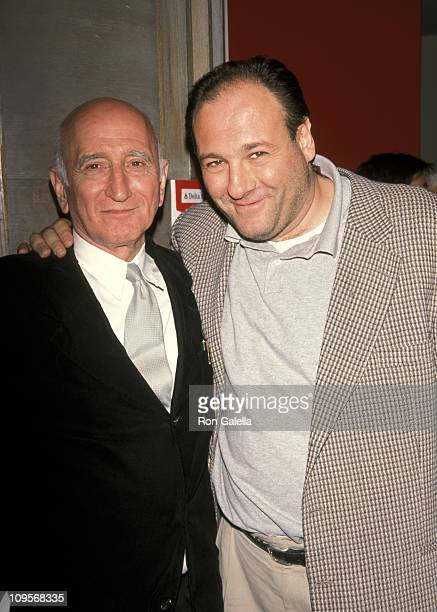 Dominic Chianese and James Gandolfini during 5th Avignon NY Film Festival Reception for 'Under Hellgate Bridge' at The French Institute in New York...