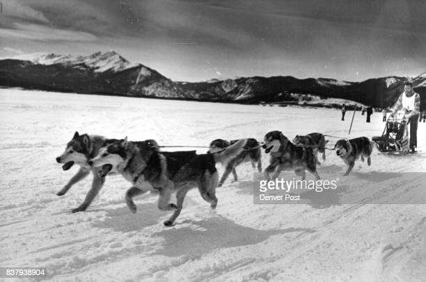 Don Bittel and his dog team head for the finish line in the Keystone classic His time wasn't good enough to win finishing behind Mike Boaz of Yorba...