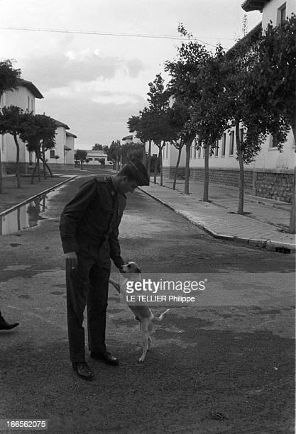 Don Juan Carlos Of Spain In The Army En Espagne à l'école militaire d'aviation de San Javier près d'Alicante dans une allée le prince Juan CARLOS D'...